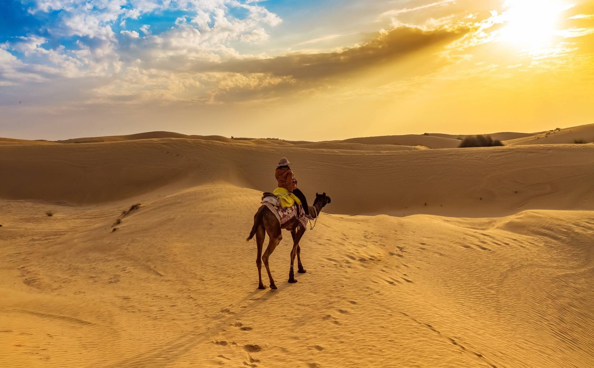 Rajasthan Itinerary – Trip to the Heritage State for 7 days
