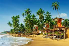 Experiences in Goa   28 activities for sheer indulgence and joy!