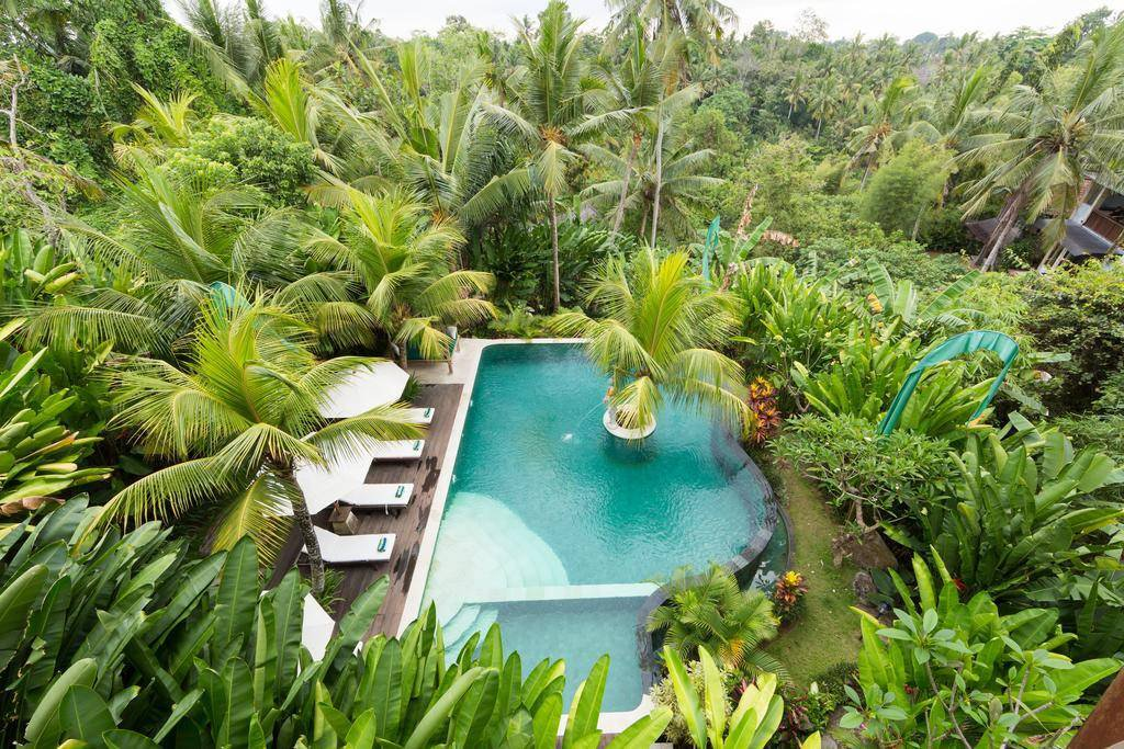 Exploring Ubud – The Cultural Heart of Bali Province in Indonesia