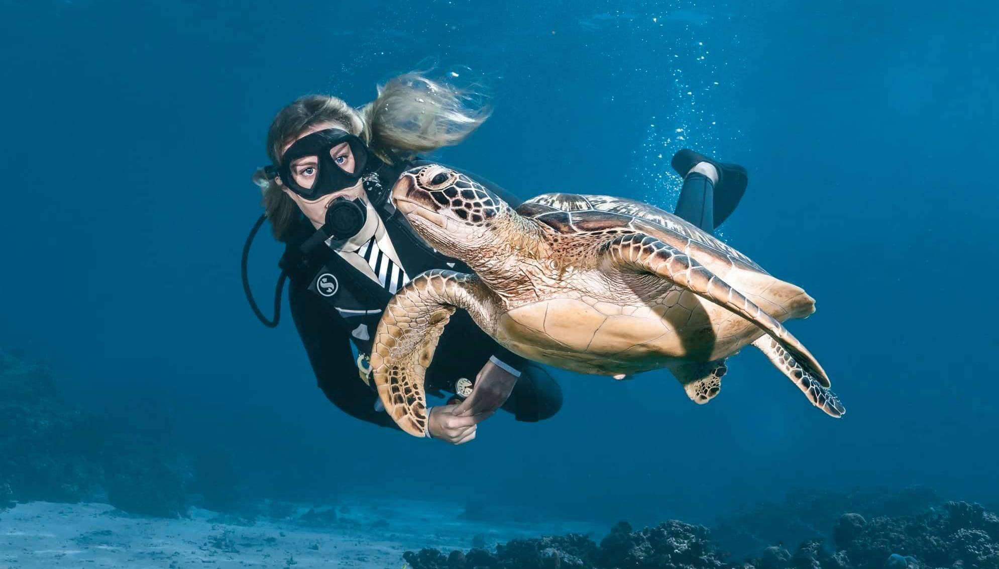 Scuba Diving in Gili Islands – An Experience of Lifetime – (Video Inside)