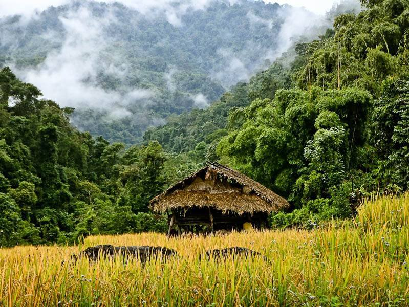 Basar: Surreal Land of the Lovable Galo Tribe