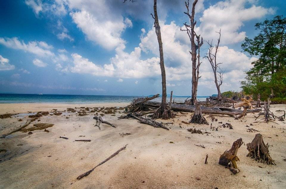 2 Weeks in Andaman - Photos of Tropical Paradise