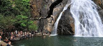 Why Dudhsagar Waterfalls should be on your Goa Itinerary