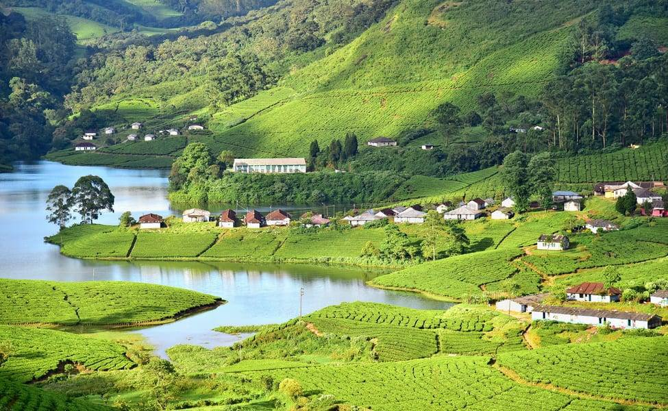 Munnar Luxury Holiday Package