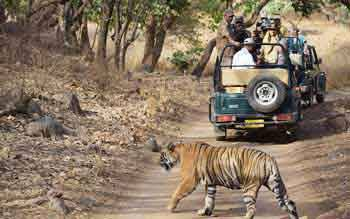 Jaipur Ranthambore Post Tour Holiday