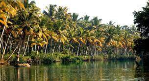 The Malabar Coast - A Drift Experience