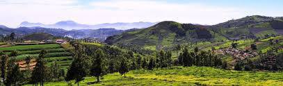 TOP TOURIST ATTRACTIONS IN KOTAGIRI