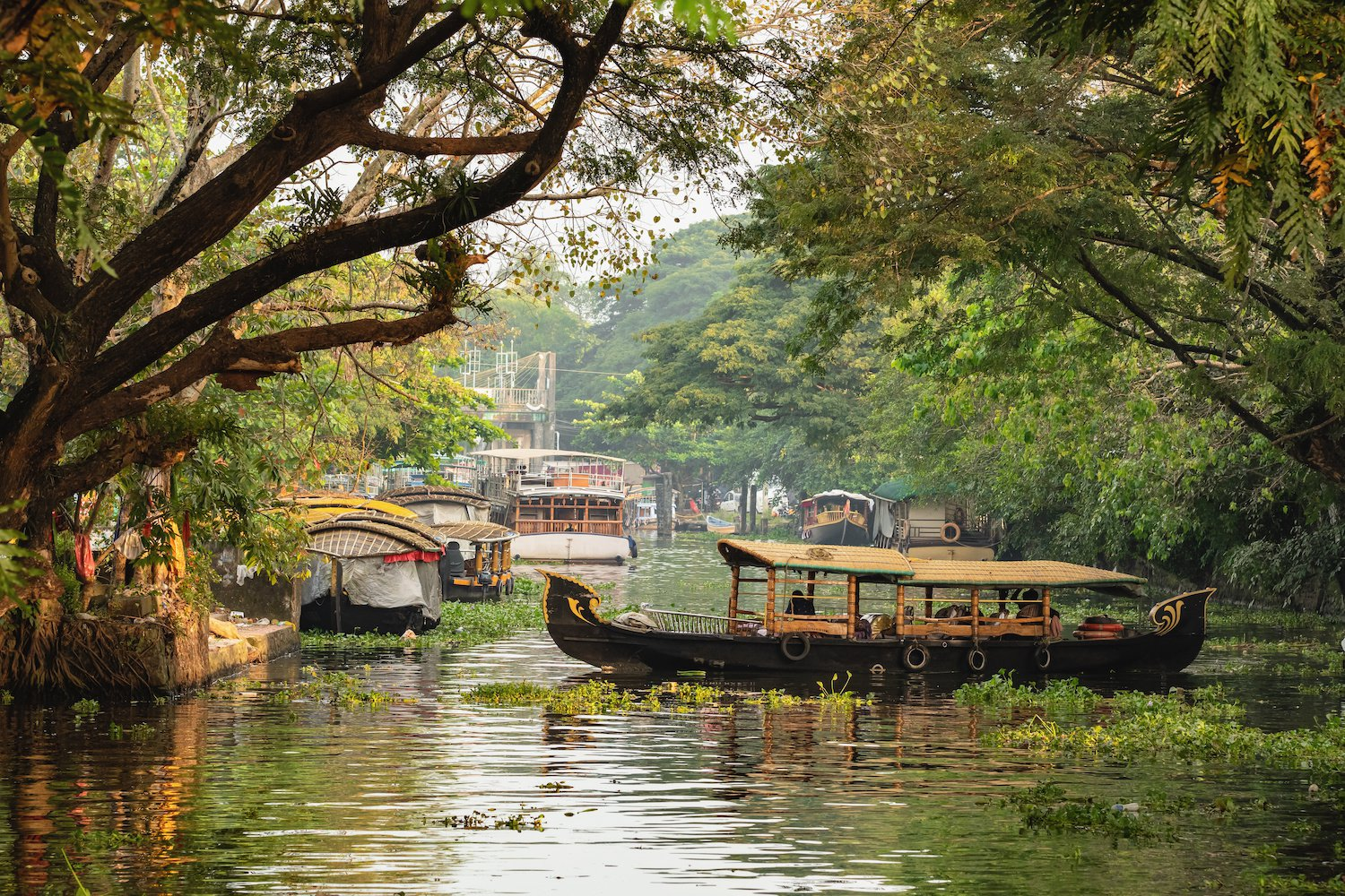 Best Places to Visit in Kerala, India – God's Own Country